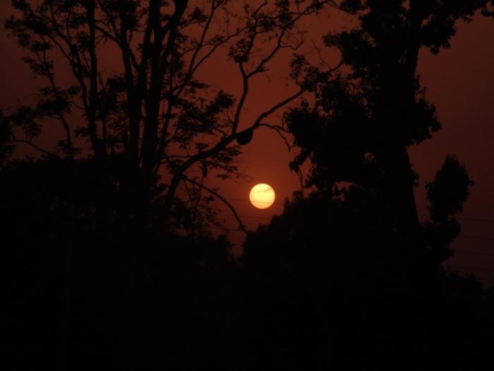 Sunset at Bandhavgarh